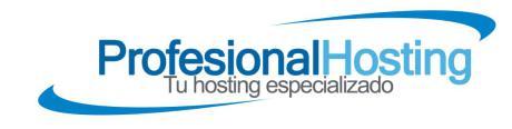 Conoce el Hosting de Profesionalhosting.com